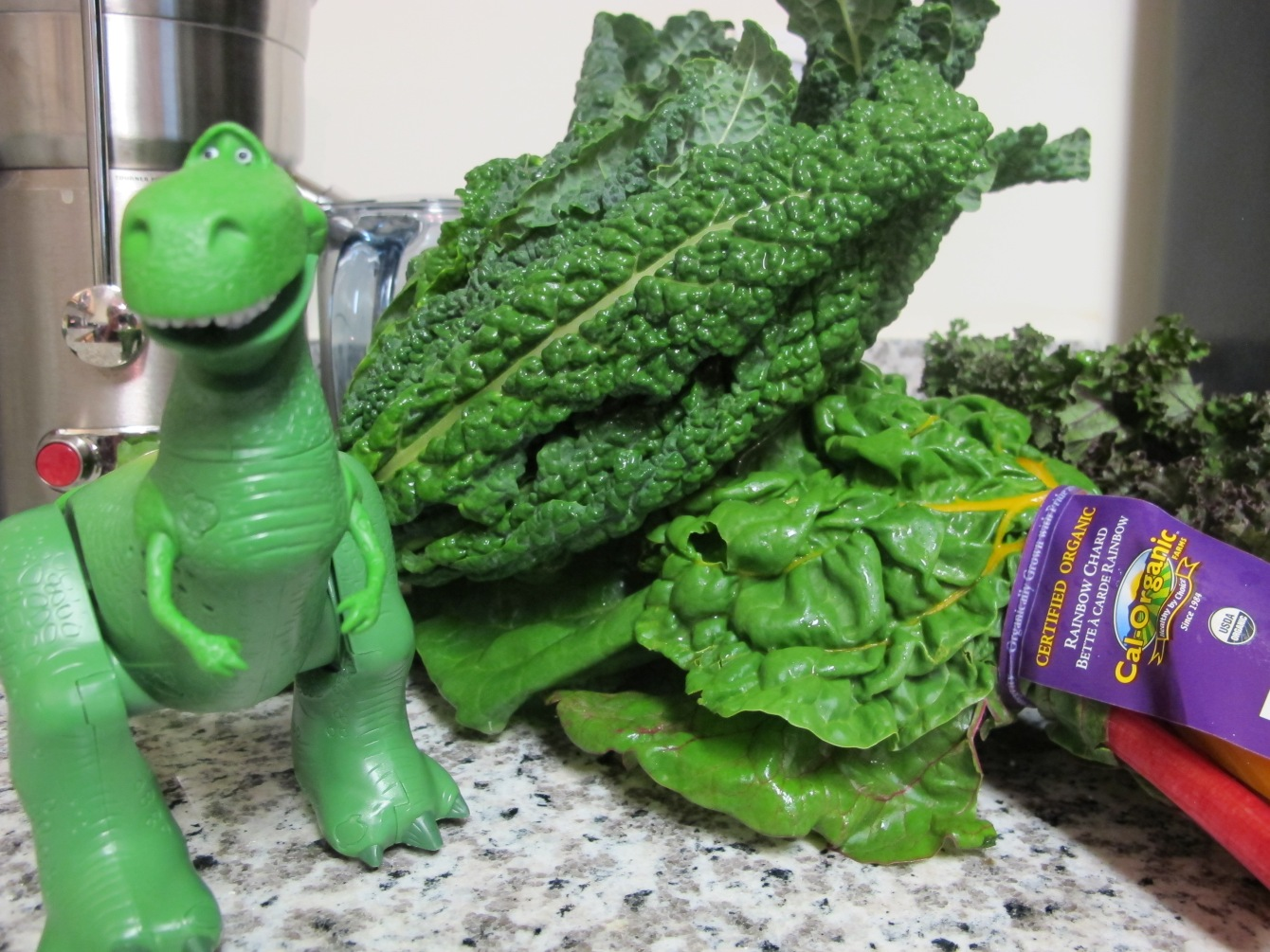 "Anna Seacat of Socially Minded Marketing says ""Make Green Food Fun!"" Dinosaur kale...Rainbow chard..."